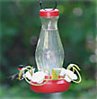 funnel bottom fill hummingbird feeder