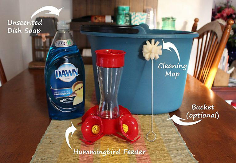 how to clean a hummingbird feeder warm water unscented soap cleaning mop bucket