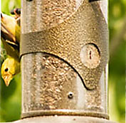 Tube Seed Feeders