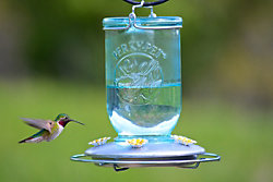 Perky-Pet® Mason Jar Wild Hummingbird Feeder