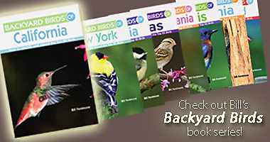 Bill Fenimore's Backyard Birds Book Series