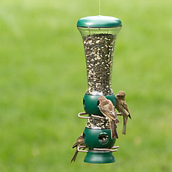 Garden Song® Select-A-Bird Tube Bird Feeder