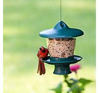 Garden Song® Height-Adjust Bird Feeder with Retractable Cord