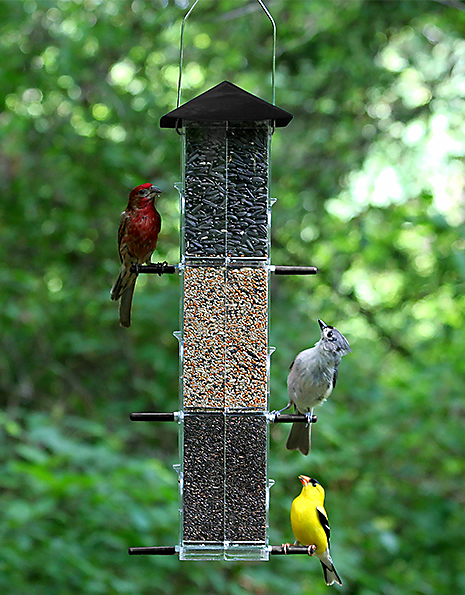 Six Feeding Stations