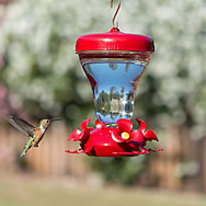 Perky-Pet® Magnolia Push-Pull Hummingbird Feeder