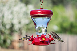 Perky-Pet® Magnolia Top Fill Plastic Hummingbird Feeder with FREE Nectar