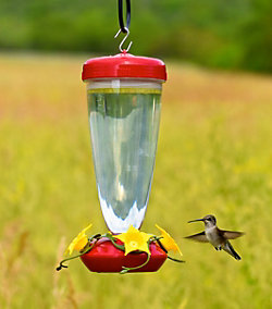 Perky-Pet® 24 oz. Top Fill Plastic Hummingbird Feeder with Free Nectar
