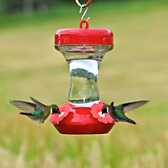"Perky-Pet® ""Perky's Finest"" 8 oz Top Fill Glass Hummingbird Feeder"