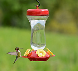 "Perky-Pet® ""Perky's Finest"" 16 oz. Top Fill Glass Hummingbird Feeder"
