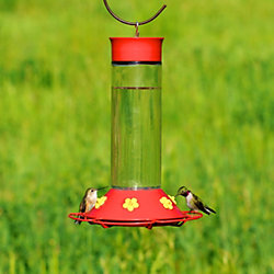 "Perky-Pet® ""Our Best"" Glass Hummingbird Feeder with Free Nectar"