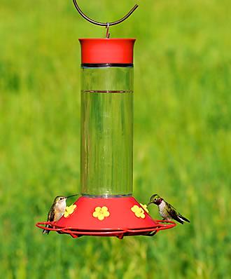 30 oz Attract More Hummingbirds