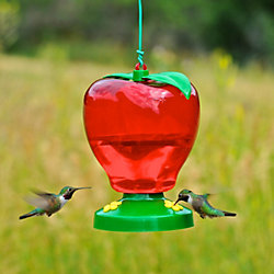 Garden Song® Apple Plastic Hummingbird Feeder