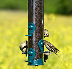 Perky-Pet® Wild Bird and Finch Feeder