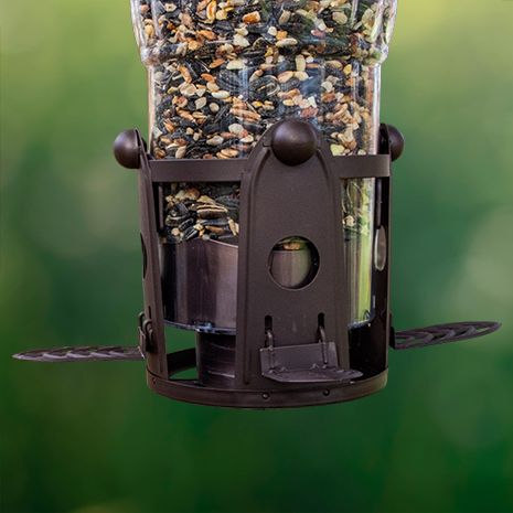 Squirrel Proof Seed Shield