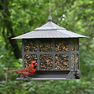 Birdscapes® Squirrel-Be-Gone II® Feeder