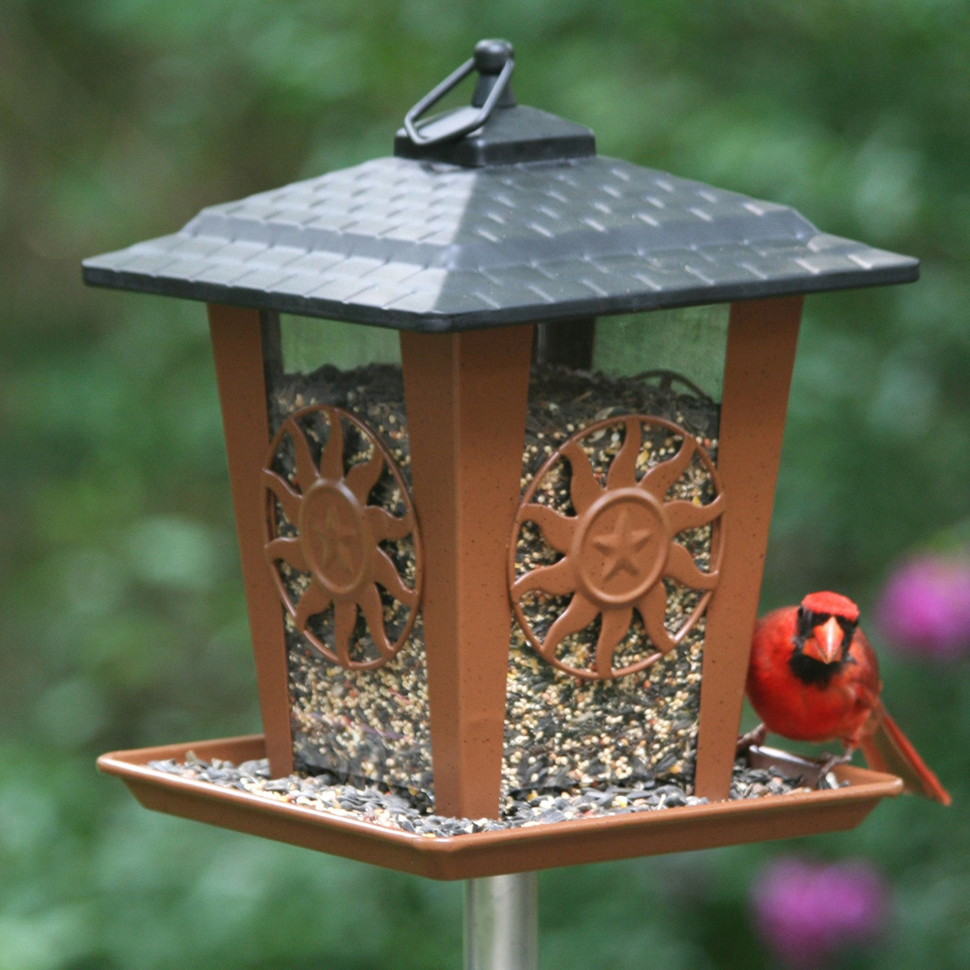 Perky-Pet® Sun & Star Lantern Wild Bird Feeder