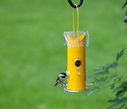 Perky-Pet® Yellow Metal Tube Bird Feeder