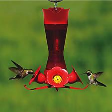 Perky-Pet® Pinch Waist Plastic Hummingbird Feeder with Free Nectar