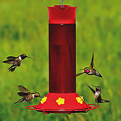 Perky-Pet® Hummer's Favorite Plastic Hummingbird Feeder with Free Nectar
