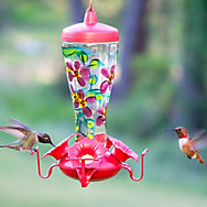 Birdscapes® Hand Painted Glass Hummingbird Feeder