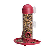 Perky-Pet® Window Bird Feeder