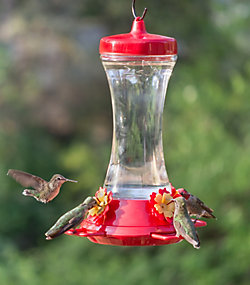 Perky-Pet® Adjustable Perch Glass Hummingbird Feeder