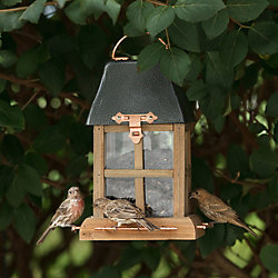 Perky-Pet® Paul Revere Wild Bird Feeder