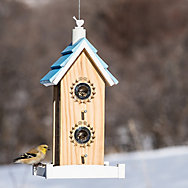 Perky-Pet® Birdie B&B Wood Bird Feeder
