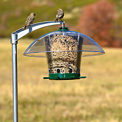 feeders squirrel steel pl bird at shop resistant lowes wildlife tube decor gallon choice birds garden feeder finch outdoors com