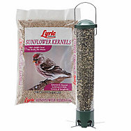 Lyric® Sunflower Kernels Bird Seed and Squirrel Proof Breakaway Feeder Bundle