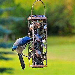 Birdscapes® Copper Garden Feeder