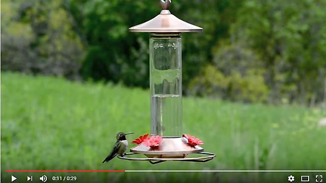 Copper Glass Hummingbird Feeder