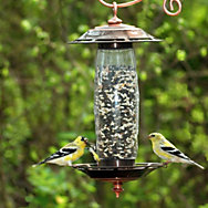 Perky-Pet® Sip or Seed Bird Feeder & Waterer