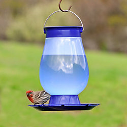 Perky Pet Top Fill Bird Waterer