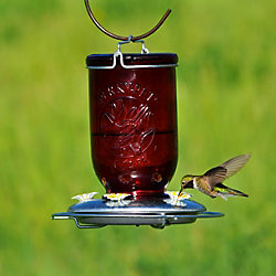 Perky-Pet® Red Mason Jar Hummingbird Feeder