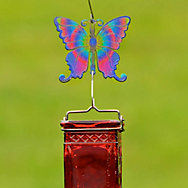 Perky-Pet® Decorative Butterfly Hanging Hook
