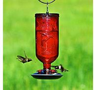 Perky-Pet® Antique Bottle Glass Hummingbird Feeder