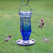 Perky-Pet® Sapphire Starburst Vintage Hummingbird Feeder