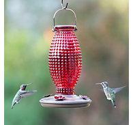 Perky-Pet® Red Hobnail Vintage Hummingbird Feeder