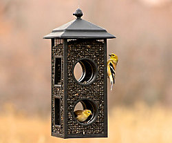 Perky-Pet® Fly Thru Wild Bird Feeder