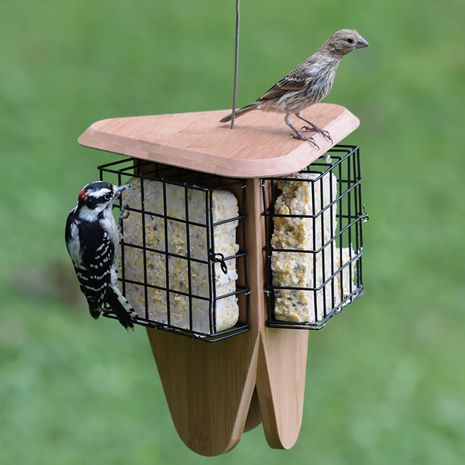 Three Servings of Suet