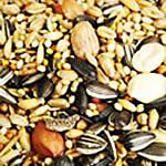 Types of Bird Food