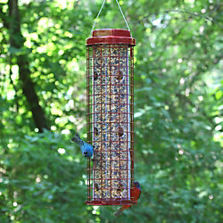 Perky-Pet® Squirrel Resistant Easy Feeder
