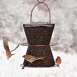 NO/NO® Hourglass® Bronze Wild Bird Feeder