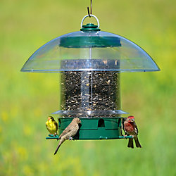K-Feeders Super Carousel Wild Bird Feeder