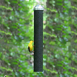 Perky-Pet® 16 Inch Metal Finch Feeder