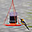 Hooded Oriole Feeder