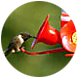 Hummingbirds 101, Type of feeder