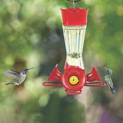 Perky Pet Pinch Waist Glass Hummingbird Feeder Model 203cpbn Perkypet Com