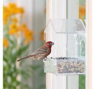 Perky-Pet® Window Bird Feeder – 1 lb Capacity